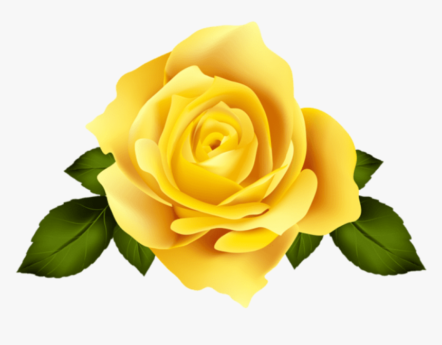 floral flower roses yellow yellowflower rose transparent background purple rose png png download kindpng transparent background purple rose png