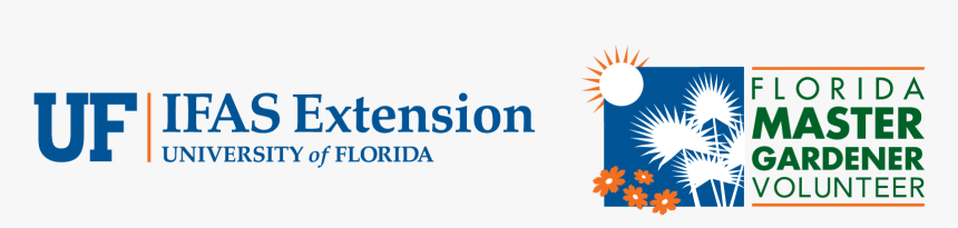 Logo Uf Ifas Extension University Of Florida, HD Png Download, Free Download