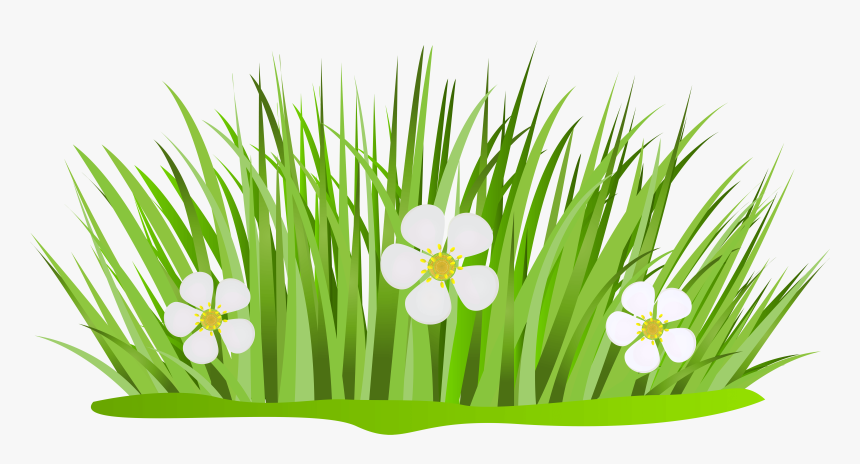 Grass Patch With Flowers Png Clip Art Image - Grass And Flower Clipart, Transparent Png, Free Download