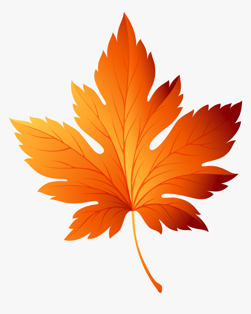 Autumn Leaf Transparent Picture Free Download - Autumn Leaf Clipart, HD Png Download, Free Download