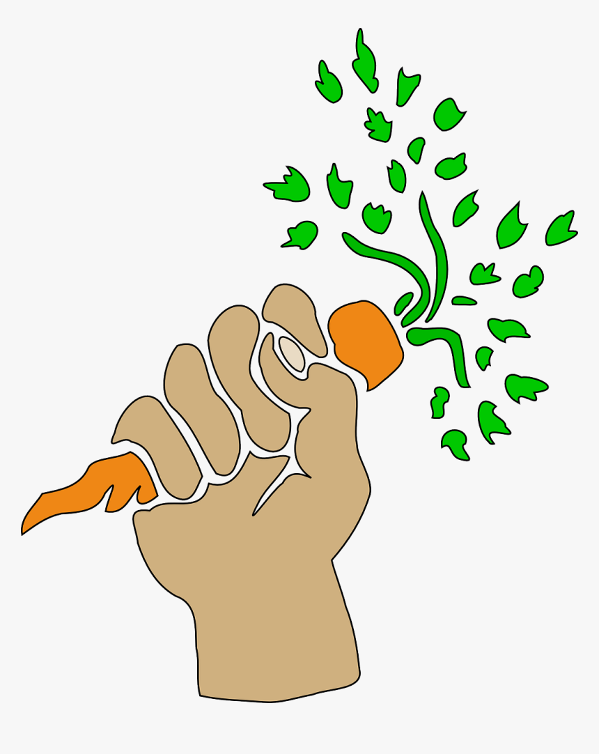 Hand Holding Carrot Clipart, HD Png Download, Free Download