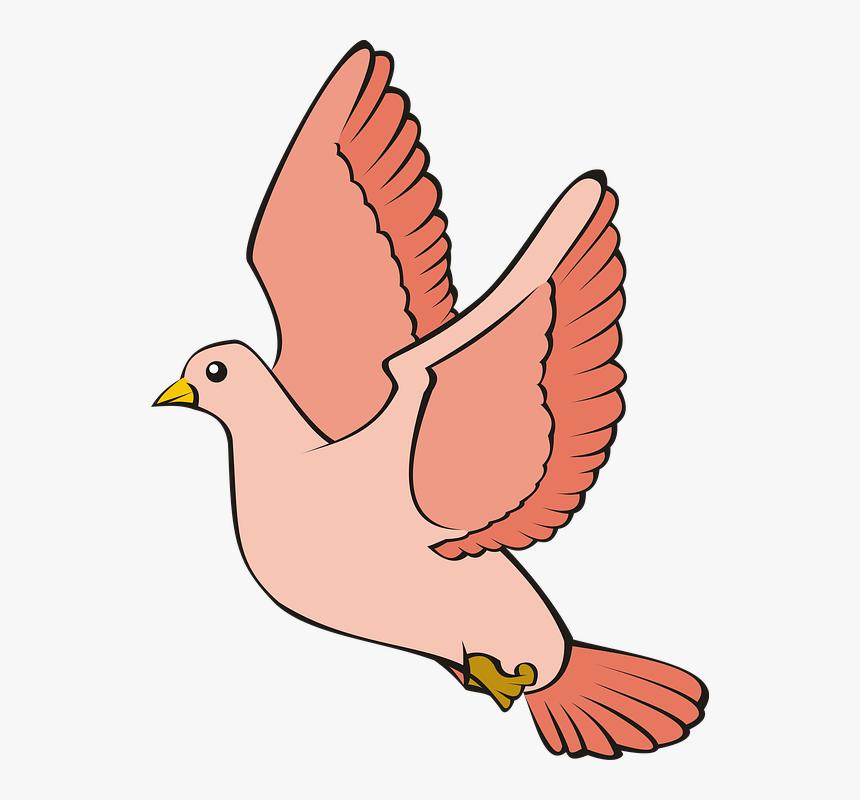 bird pigeon flight sky red adobe adobe photoshop desain gambar burung merpati hd png download kindpng bird pigeon flight sky red adobe