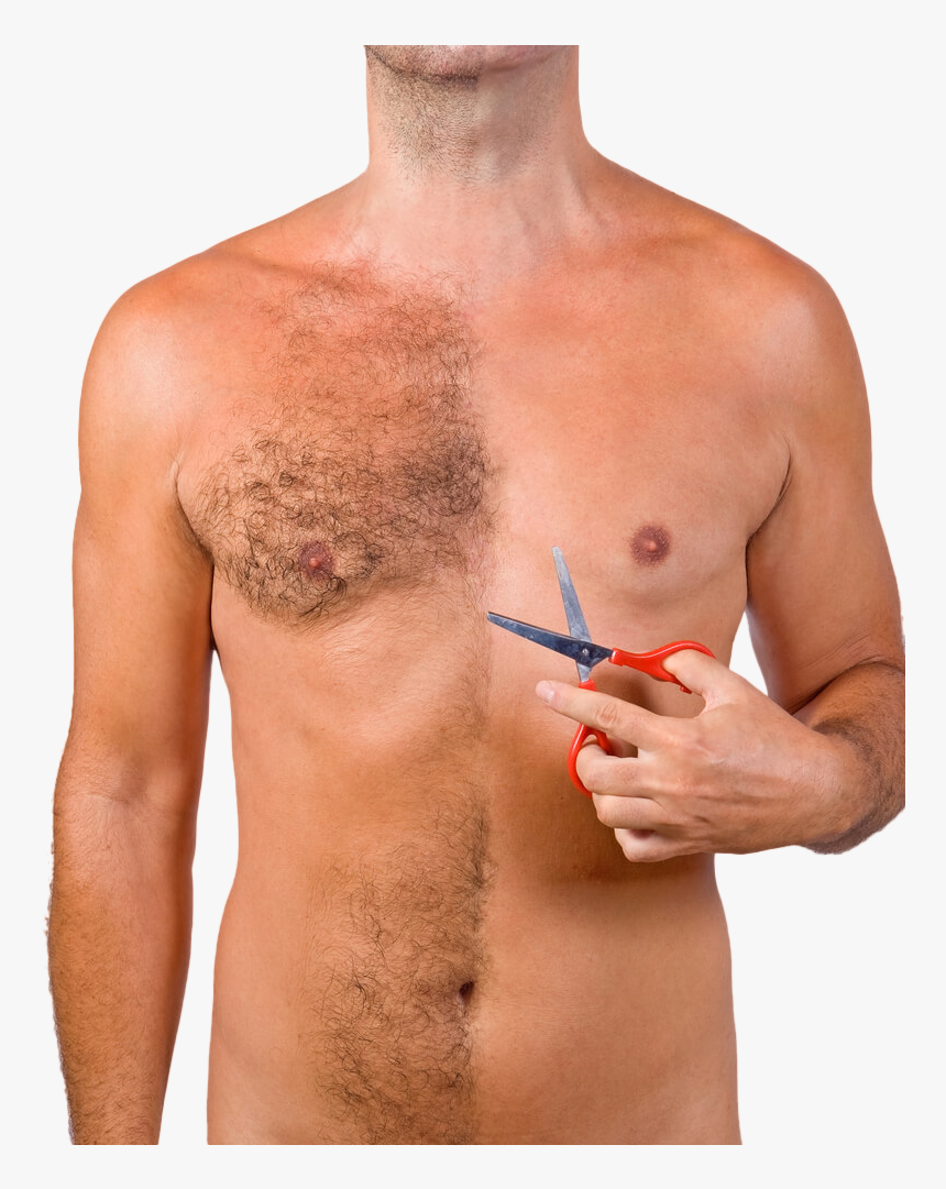 Body Hair Transplant In India - Hairs On Abdominal And Chest Regions, HD Png Download, Free Download