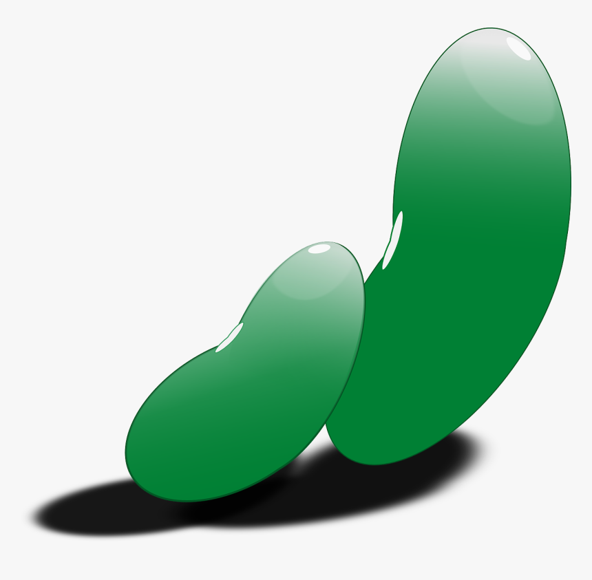 Green Bean Seed Clipart, HD Png Download, Free Download