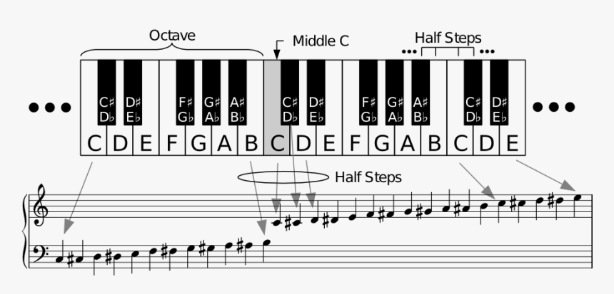 Black Notes On Piano Scale, HD Png Download, Free Download