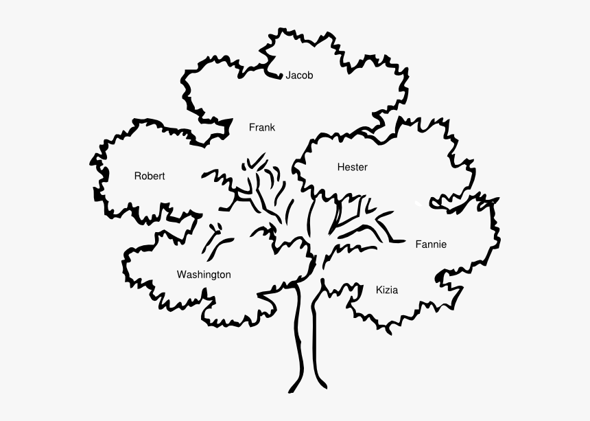 Banner Stock Cook Clip Art At Clker Com Vector - Outline Pictures Of Tree, HD Png Download, Free Download
