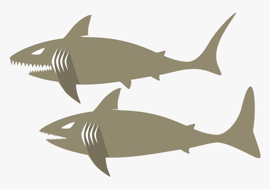 Marine Biology,shark,fin - กราฟฟิก ฉลาม, HD Png Download, Free Download