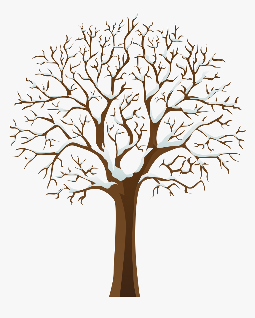 Snowy Winter Tree Transparent Png Image, Png Download - kindpng