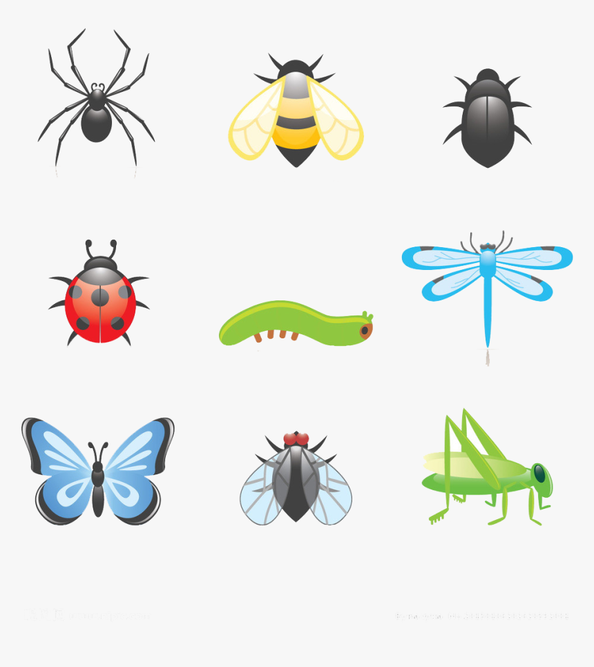 Cartoon Clip Art Transprent - Cartoon Insect, HD Png Download, Free Download