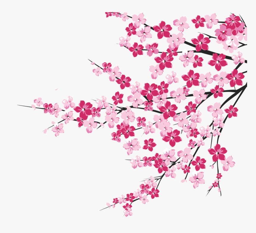 Cherry Blossom Tree Branch - Cherry Blossom Tree Clipart Png, Transparent Png, Free Download