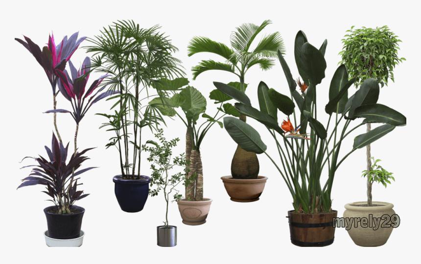 Plantaspost - Vaso De Flor Adesivo Para Parede, HD Png Download, Free Download