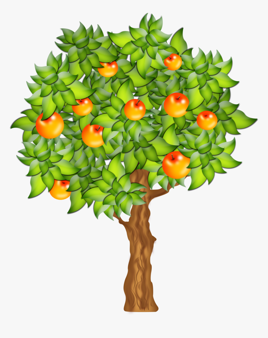 0 F132b 6c858cbe Orig - Tree With Fruit Clip Art, HD Png Download, Free Download