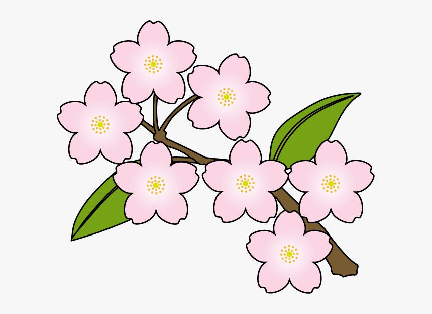 Floral Pattern Vector, Floral Patterns, Flower Line - Watercolor Flowers  Line Png - Free Transparent PNG Clipart Images Download