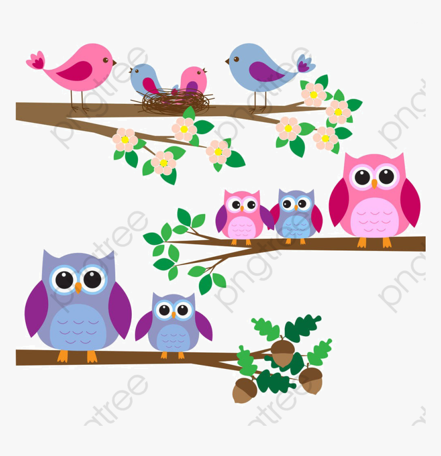 Bird Clipart Tree - Imagenes De Buhos En Ramas, HD Png Download, Free Download
