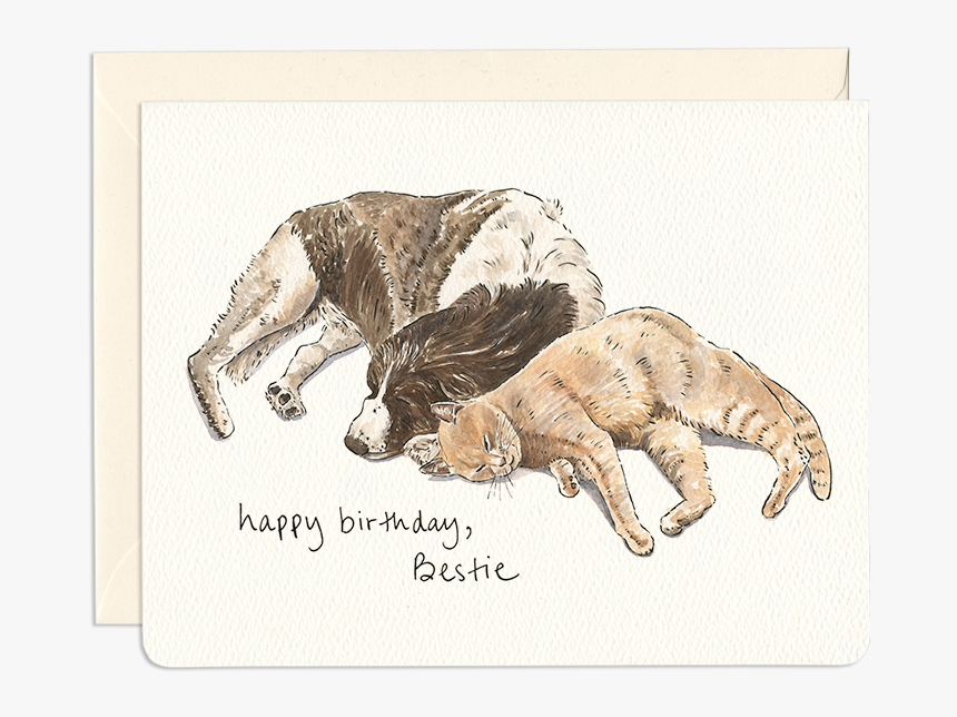 Dog & Cat Friends Greeting Card - Happy Birthday Card Dog Birthday Drawing, HD Png Download, Free Download