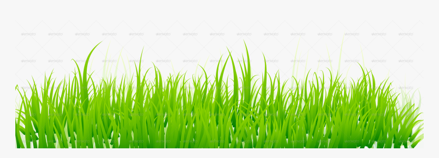 Green Grass White Background , Png Download - Grass Png, Transparent Png, Free Download