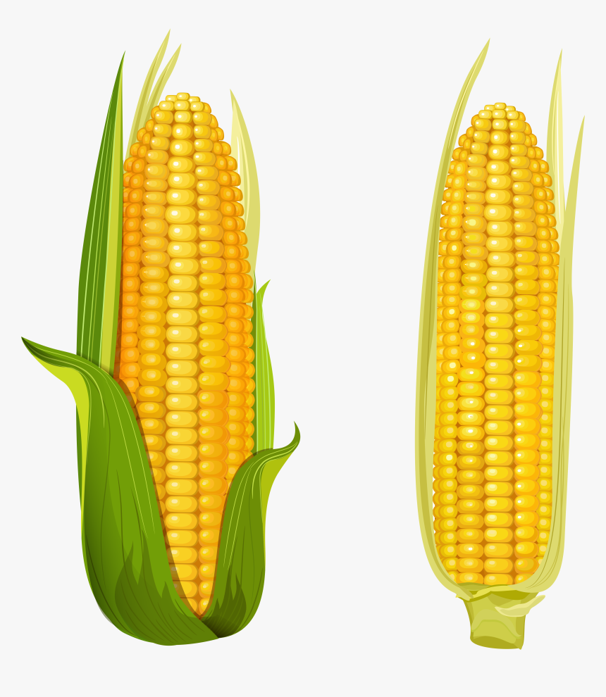 Best Free Cartoon Corn Clipart Kid Cdr - Corn Clipart - Free Transparent  PNG Clipart Images Download
