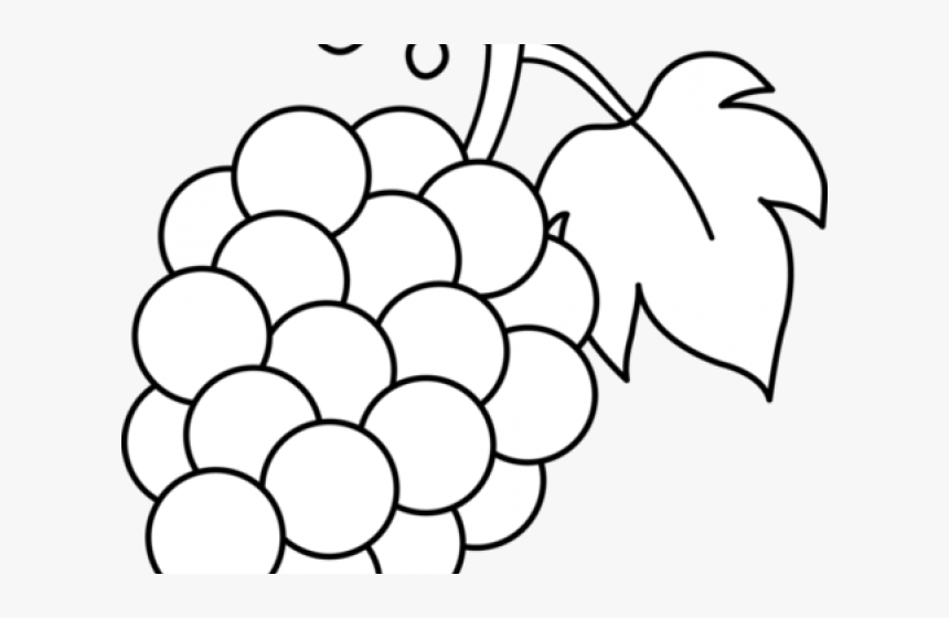 Grape Clipart Fruite - Black And White Grape Clipart, HD Png Download, Free Download