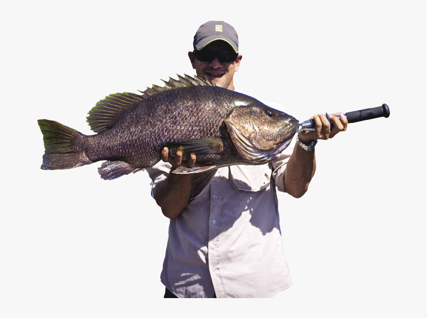 Tpa 534 Dk Opt - Fisherman Png, Transparent Png, Free Download