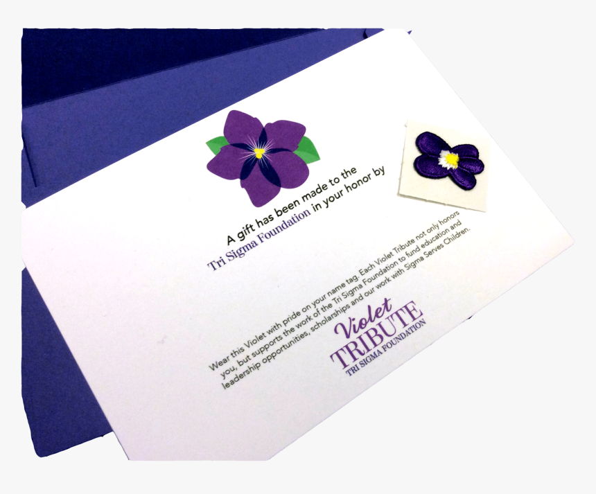 Pansy, HD Png Download, Free Download