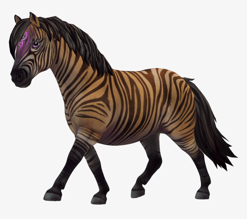 Click The Links To Download The Resources - Zony Star Stable Jäsen, HD Png Download, Free Download