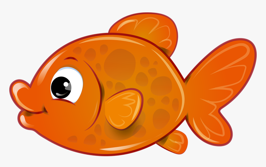 Fish Png Transparent Transparent Background Fish Clipart Free Png Download Kindpng