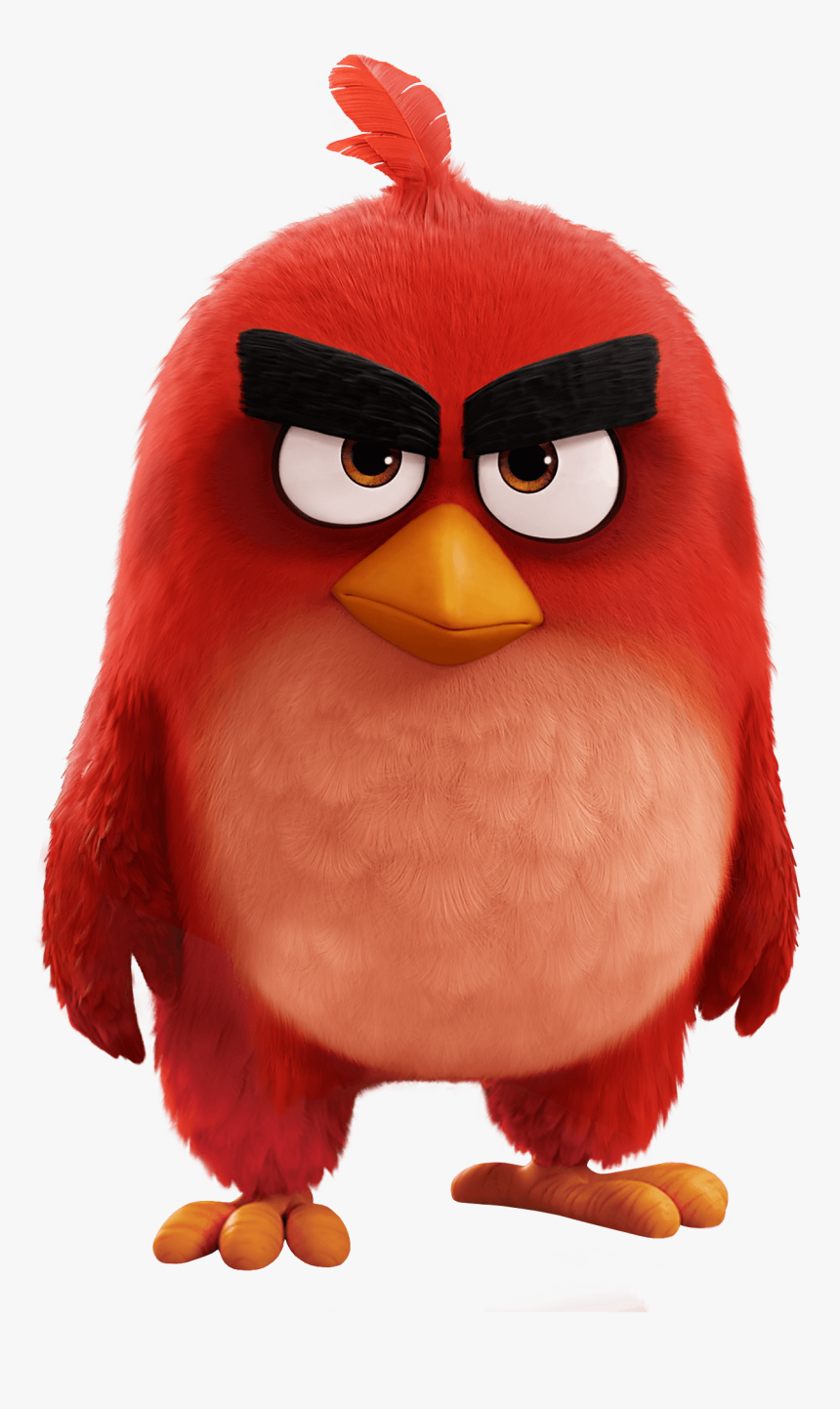 Angry Birds Movie Red Bird - Red From Angry Birds, HD Png Download, Free Download