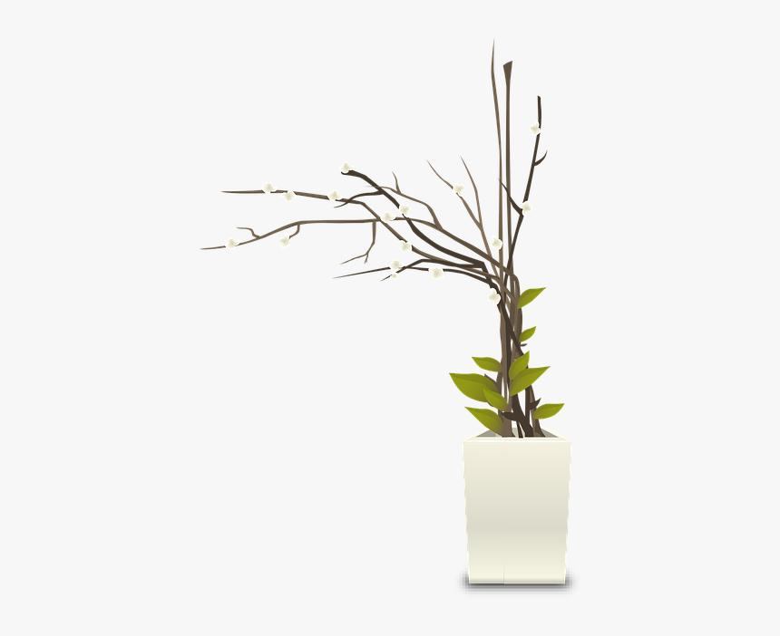 Plants, Pots, White, Houseplants, Indoors, Interior - Flower Pot Pot Png Plant, Transparent Png, Free Download