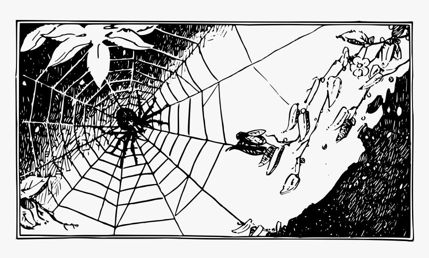 Spiderweb Wallpaper Desktop Black