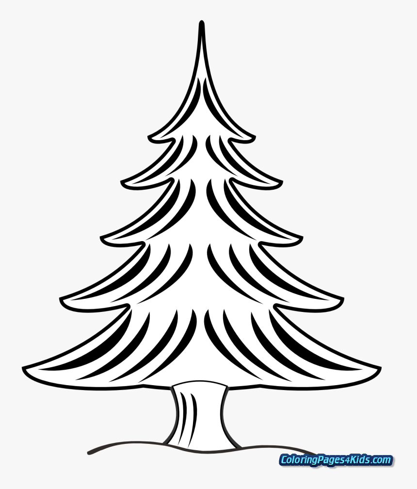 Christmas Tree With Presents Coloring Pages For Kids - Pine Clipart Black And White, HD Png Download, Free Download