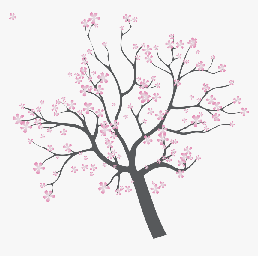 Cherry Tree Branch Png - Cherry Blossom, Transparent Png, Free Download