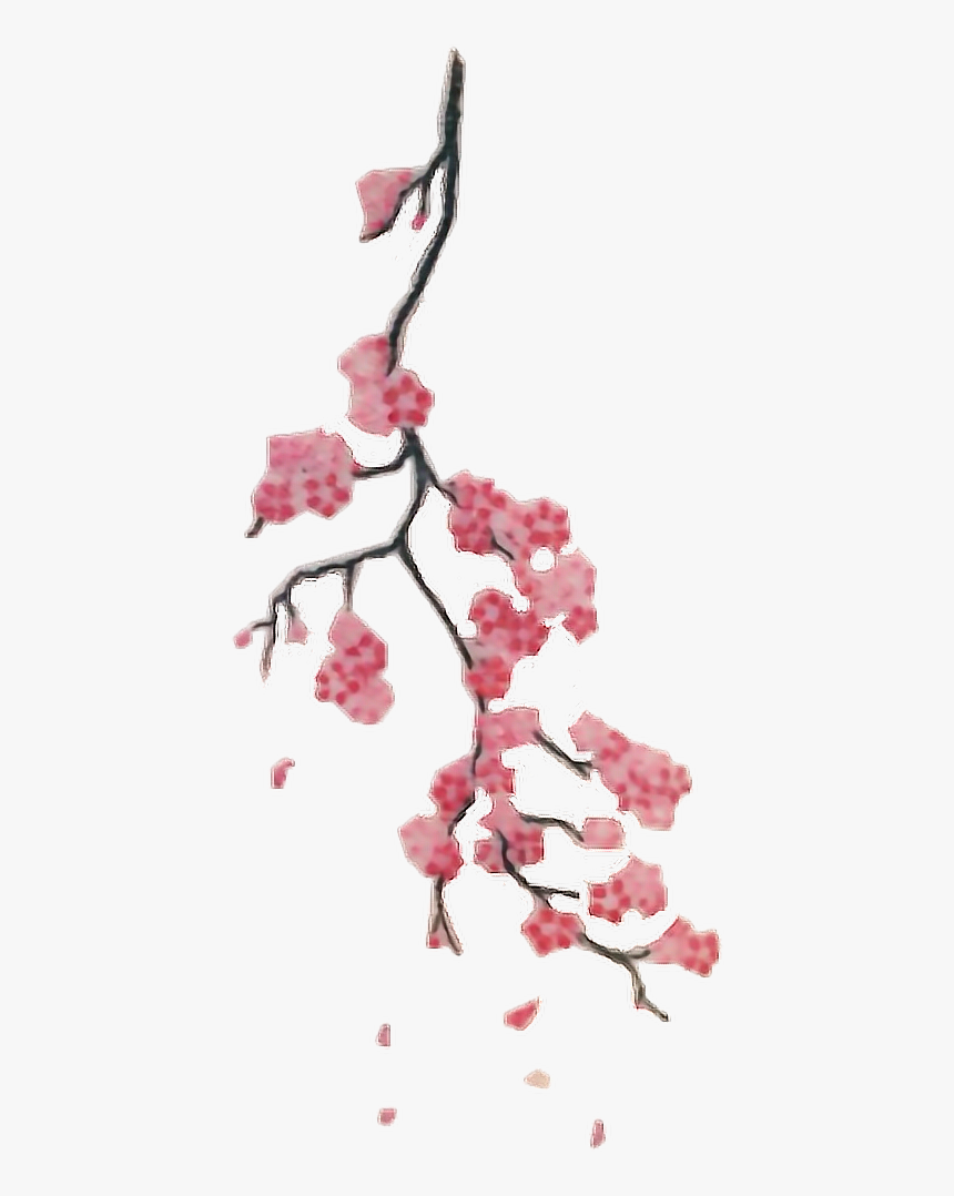 #interesting #art #tattoo #png #people #aesthetic #freetoedit - Cherry Blossom Branch Tattoo, Transparent Png, Free Download