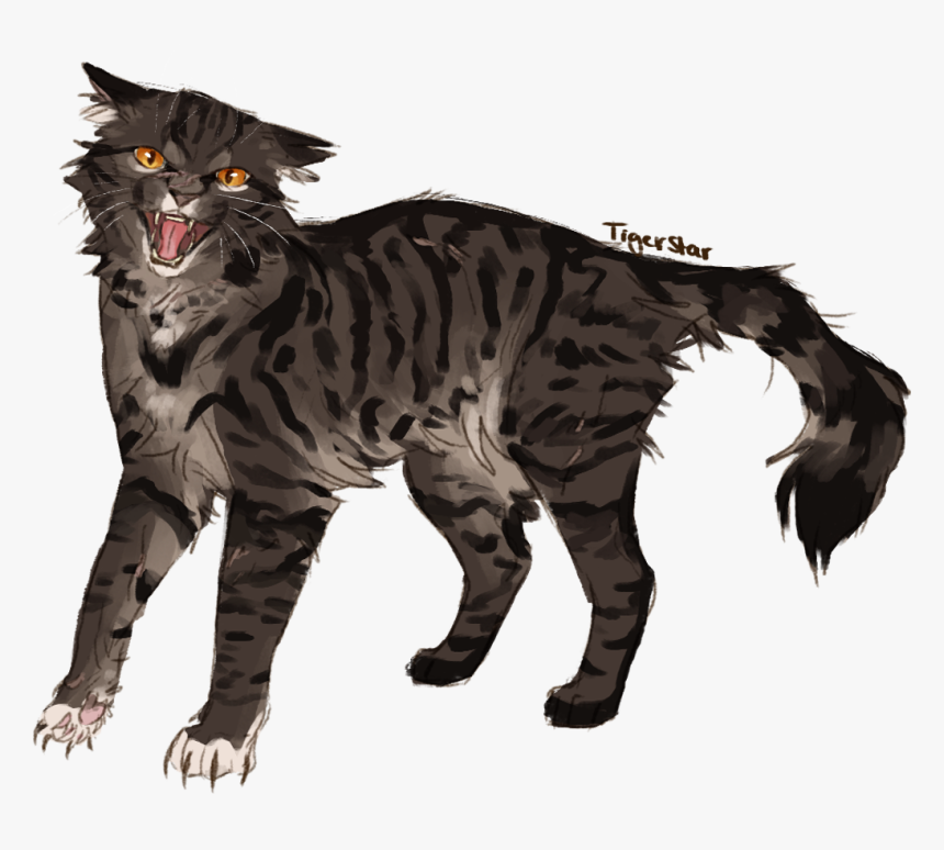 Angry Man - Warrior Cats Angry Cat, HD Png Download, Free Download