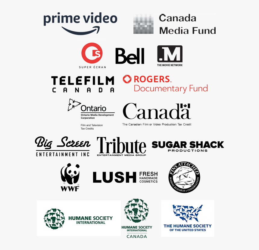 Team Sharkwater Partners - Logo Canadian Television Bell Fund Credits, HD Png Download, Free Download