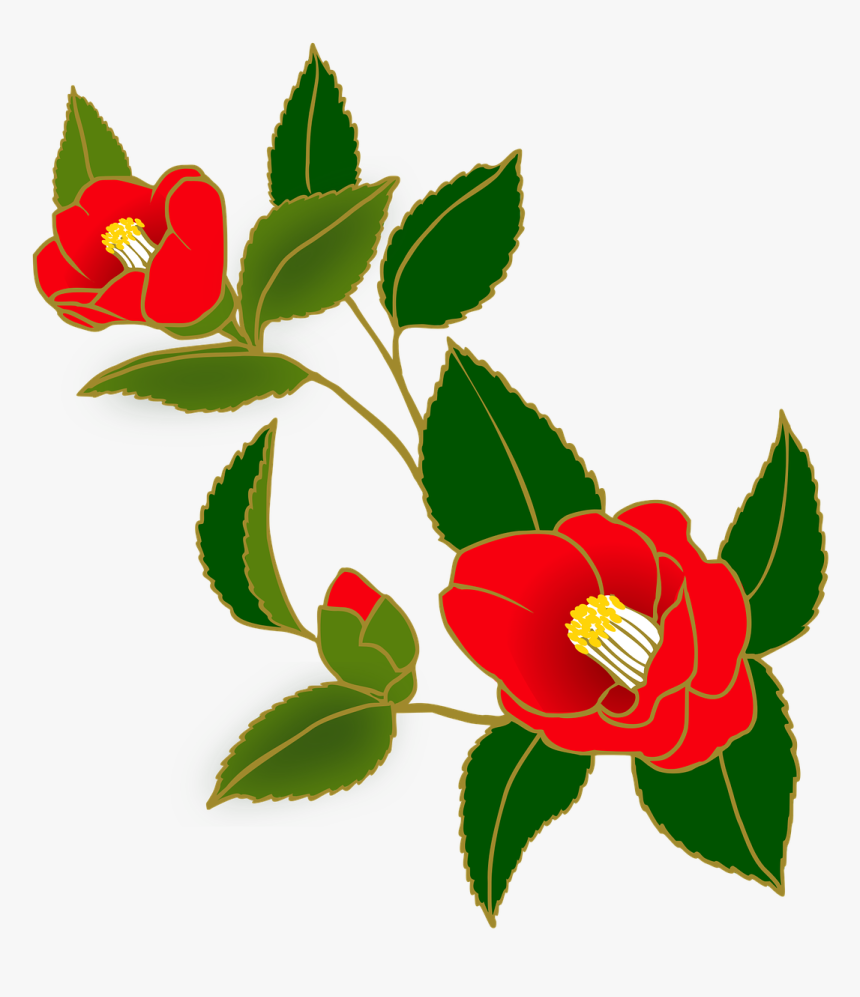 Camellia Flower Japanese Art, HD Png Download, Free Download