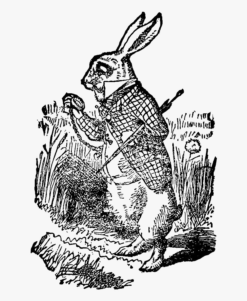 "White Rabbit Alice""s Adventures In Wonderland The Mad - Alice In Wonderland Vintage Illustrations, HD Png Download, Free Download"