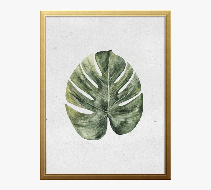 Palm Branch Art Print - Monstera Deliciosa, HD Png Download, Free Download