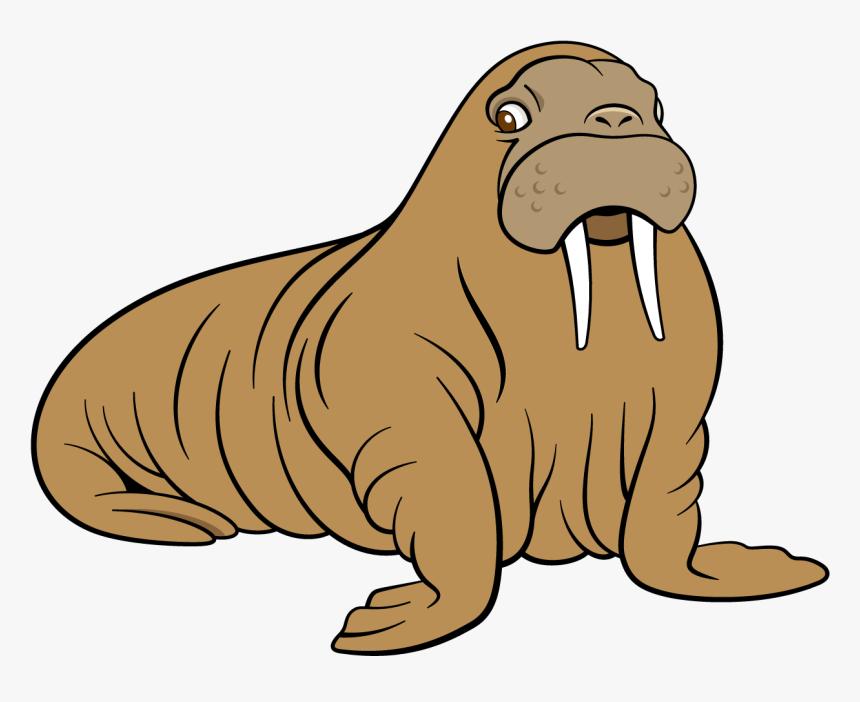 Sea Lion Dog Transprent - Clip Art Sea Lion, HD Png Download, Free Download