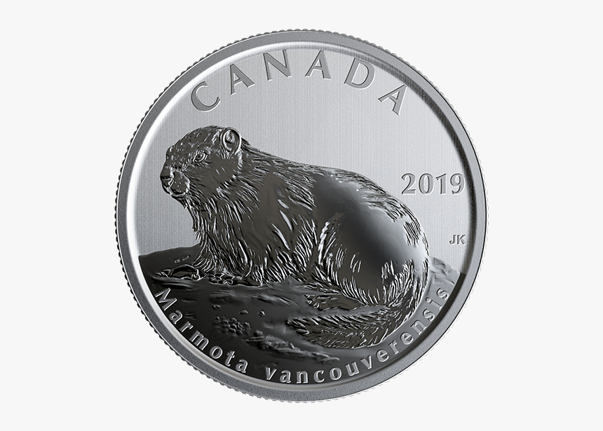 Canada 50 Cents 2019, HD Png Download, Free Download