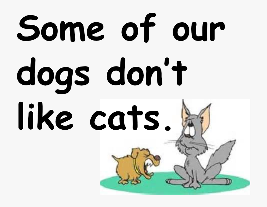 Dislike Cats Adolin Boya Hd Png Download Kindpng