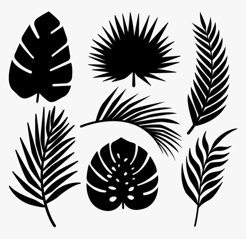 Transparent Palmeras Tropicales Png Tropical Leaves Svg Free Png Download Kindpng