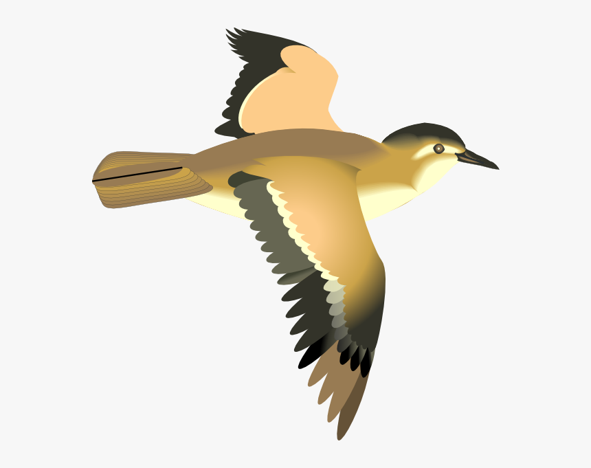 Bird Fly Animation Png, Transparent Png, Free Download