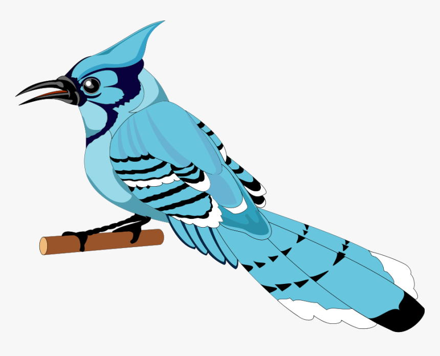 Bird 21 Free Vector - Bluejay Clipart Png, Transparent Png, Free Download