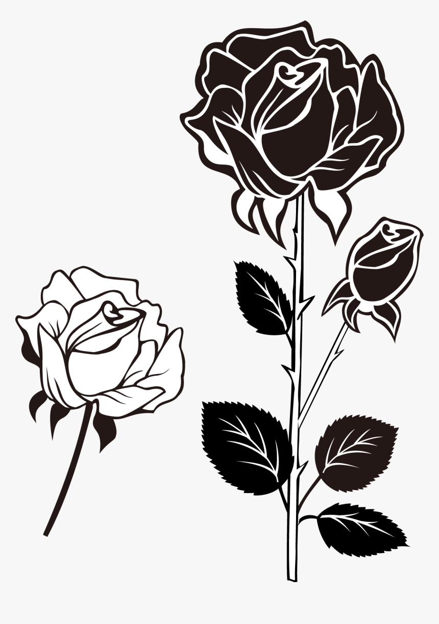 Clip Art Black And White Roses Bunga Mawar Vektor Hitam Putih Hd Png Download Kindpng