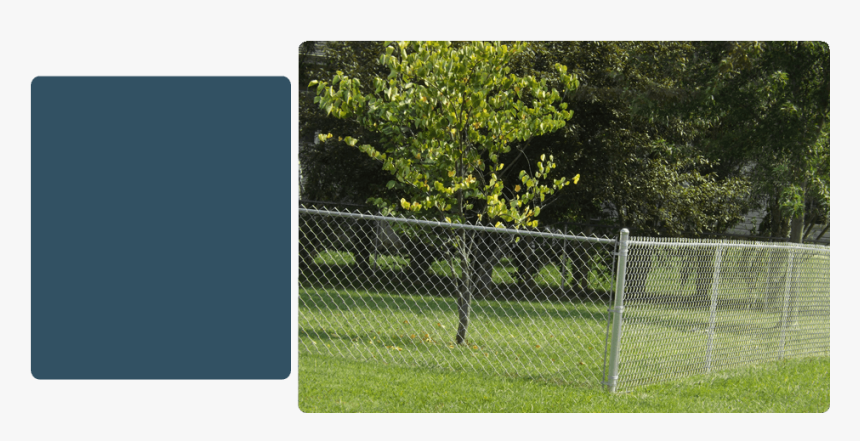 Barbed Wire, HD Png Download, Free Download