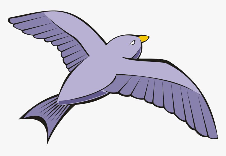 Bird Columbidae Rock Dove Flight Beak Flying Birds Clip Art Hd Png Download Kindpng