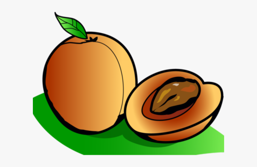Png Download , Png Download - Apricots Clipart, Transparent Png, Free Download