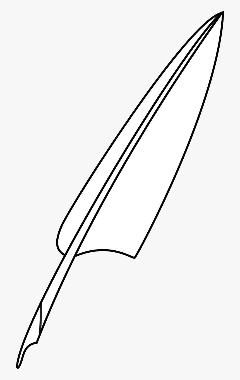 Gambar Pena Bulu Ayam HD Download Kindpng