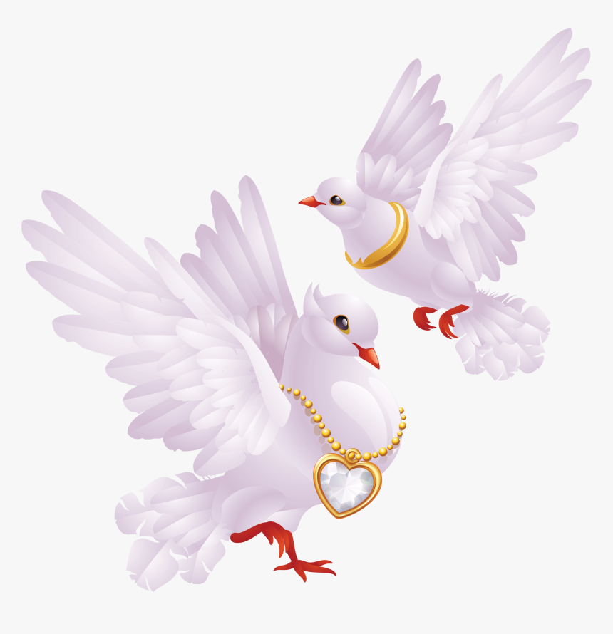 Transparent Wedding Dove Png Png Download Kindpng Choose from 1500+ dove graphic resources and download in the form of png, eps, ai or psd. transparent wedding dove png png