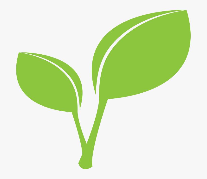 Leaf Clipart Logo - Apple Stem Clip Art, HD Png Download ...